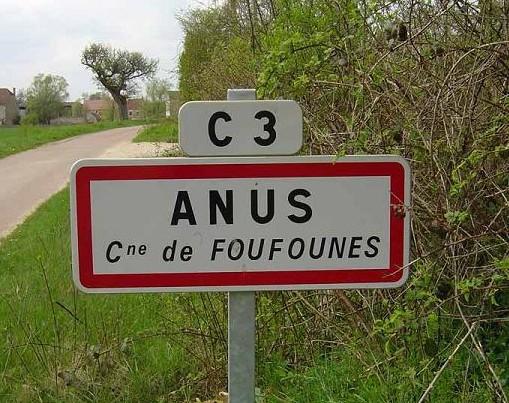 anus.jpg